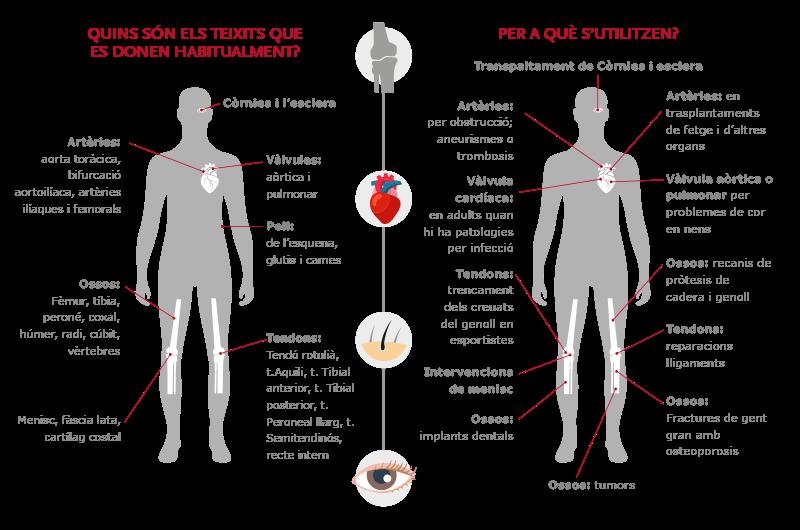 Infografia donació de teixits
