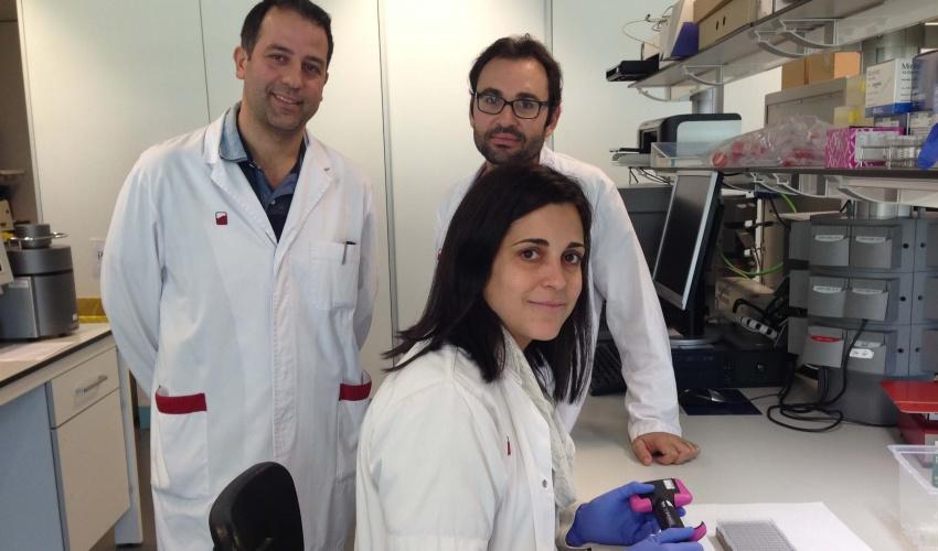 Equip Laboratori HLA